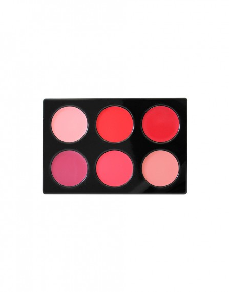 PALETTE LIP CREAM B